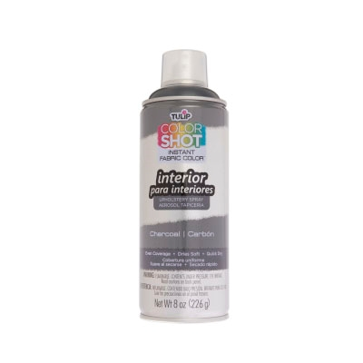 Picture of ColorShot Interior Charcoal