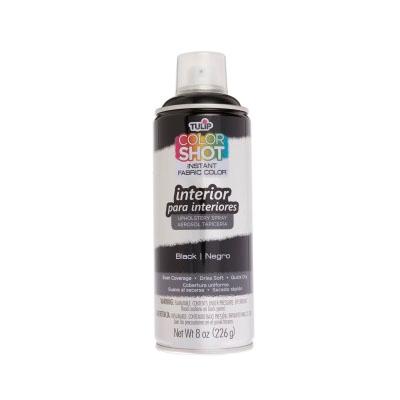 Picture of ColorShot Interior Black