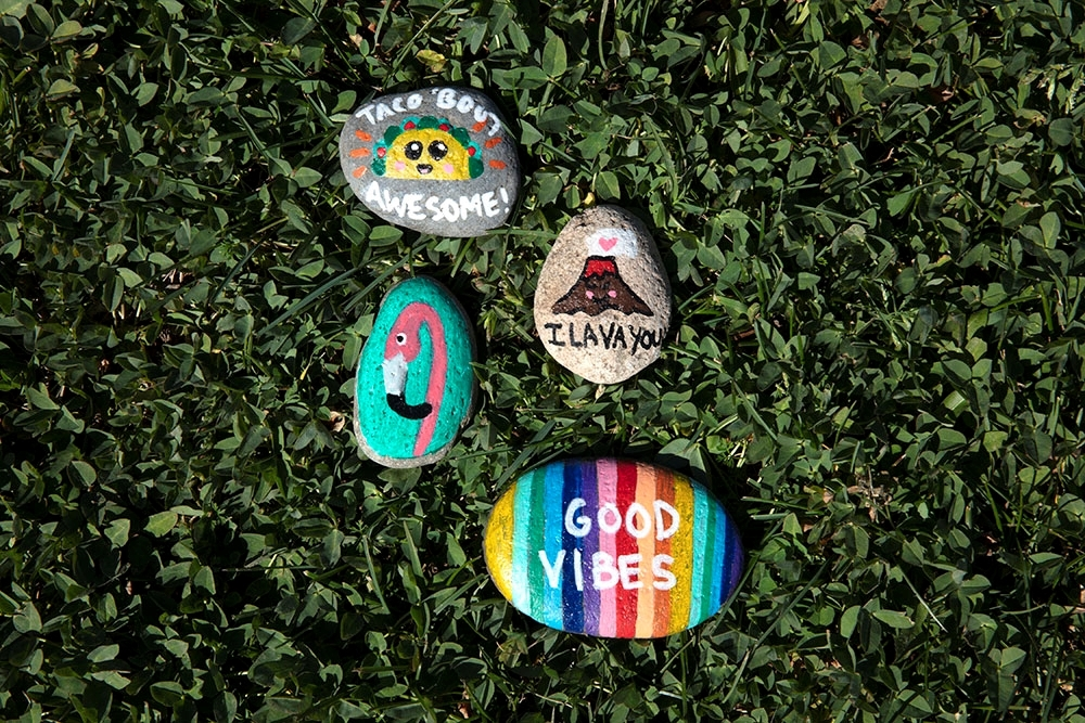 Tulip Summer Crafts for Kids - Painted Rocks