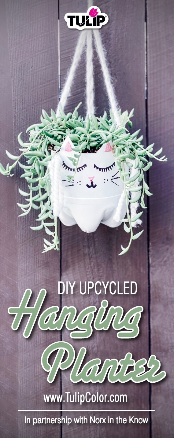 Upcycle Project: DIY Hanging Planter