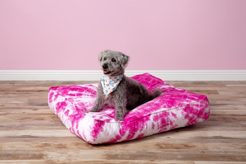 Tie-dye dog bed