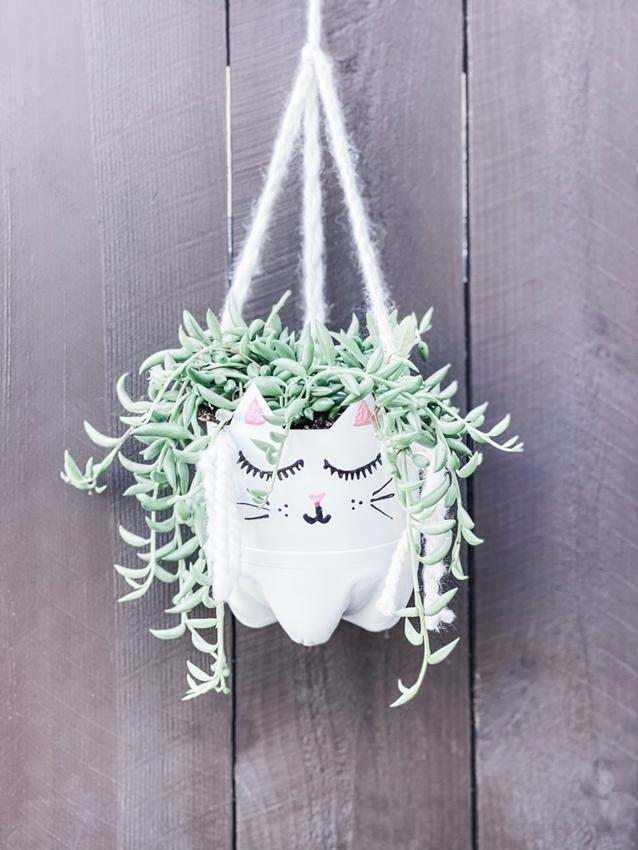 DIY Hanging Cat Planter